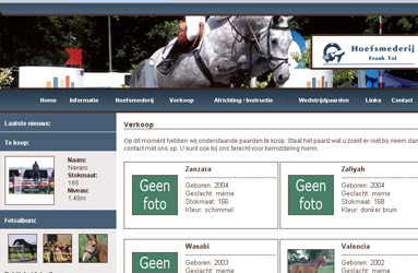 Open de website Tolsporthorses